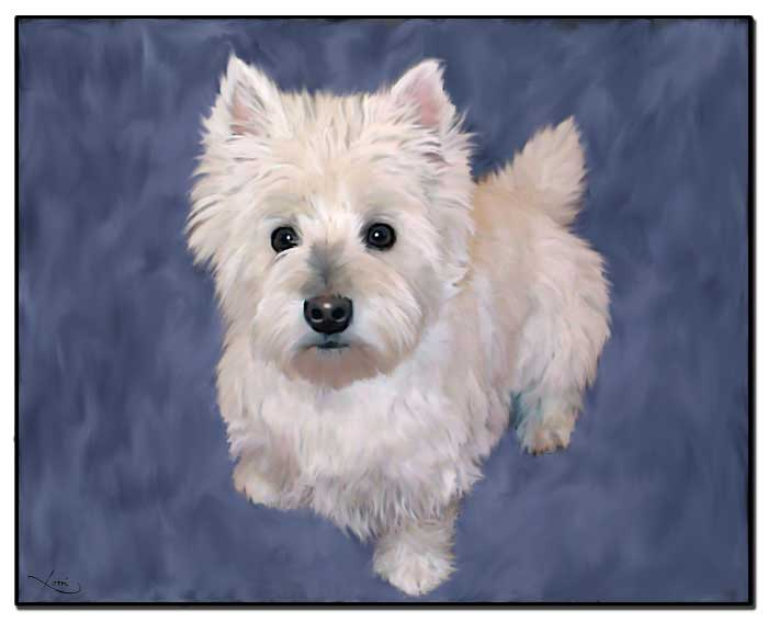 Elle a West Highland White Terrier