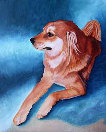 Golden Retriever Painting in oils on canvas