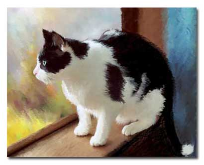 Cat Portrait of   Sylvester the Cat